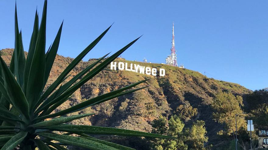 El signo de Hollywood manipulado para celebrar la marihuana