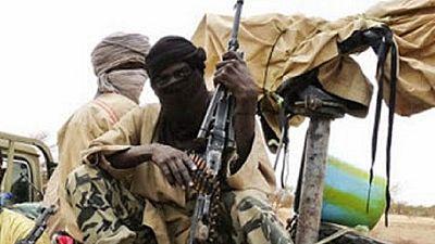 Niger : nouvelle attaque de Boko Haram contre des positions de l'armée