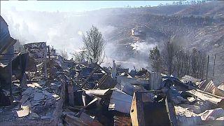 Şili'deki orman yangınları kontrol altına alındı