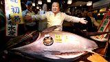 Blauflossen-Thunfisch für 600.000 Euro von Sushi-Kette ersteigert