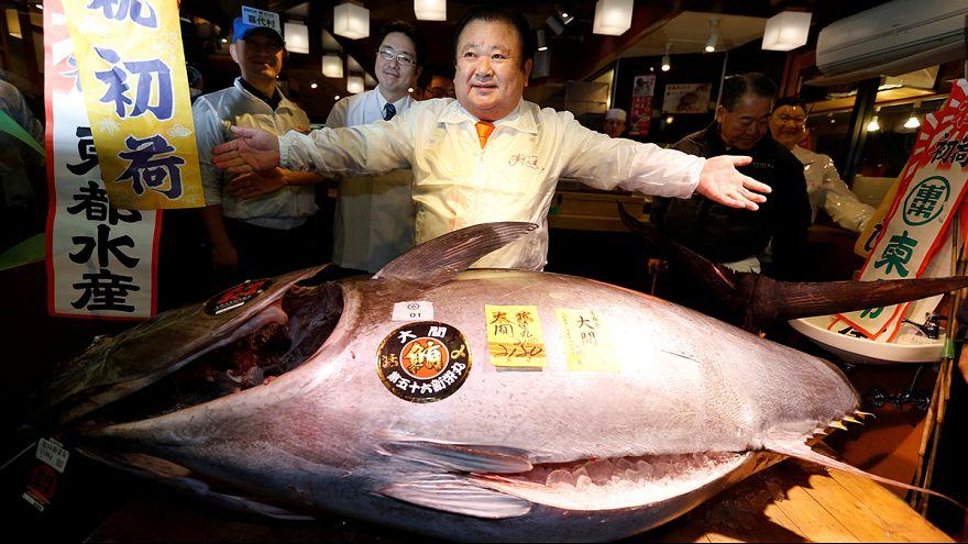 Япония: тунца весом 212 кг продали за 600 тысяч долларов