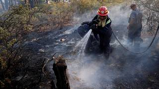 South Africa: Cape Town wildfires contained