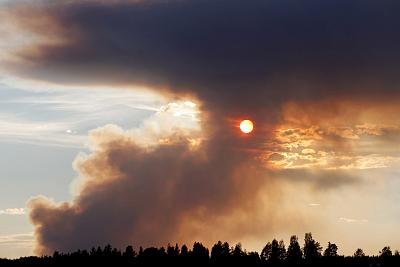 A wildfire burns in Karbole, Sweden, on July 15.