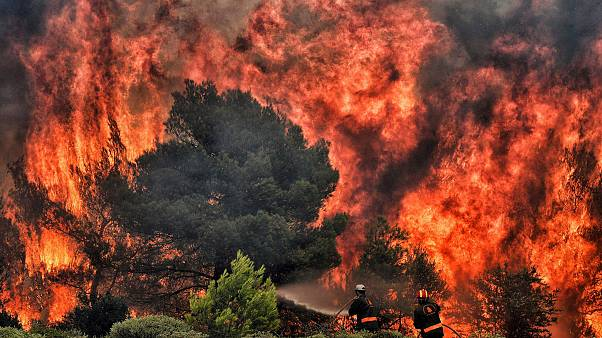 Image: Firefighters try to extinguish flames in the village of Kineta, Gree