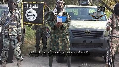 Niger: More Boko Haram fighters surrender