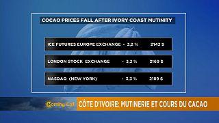 Côte d'Ivoire : l'impact des mutineries sur les cours du cacao