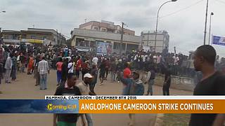 Anglophone Cameroonians intensify protests [The Morning Call]