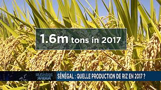 China economy maintains growth and Senegal's rice forecast for 2017