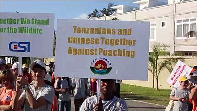 Tanzanie: marche pour la protection des éléphants