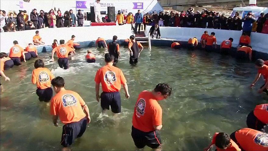 Güney Kore'de buzda alabalık avı