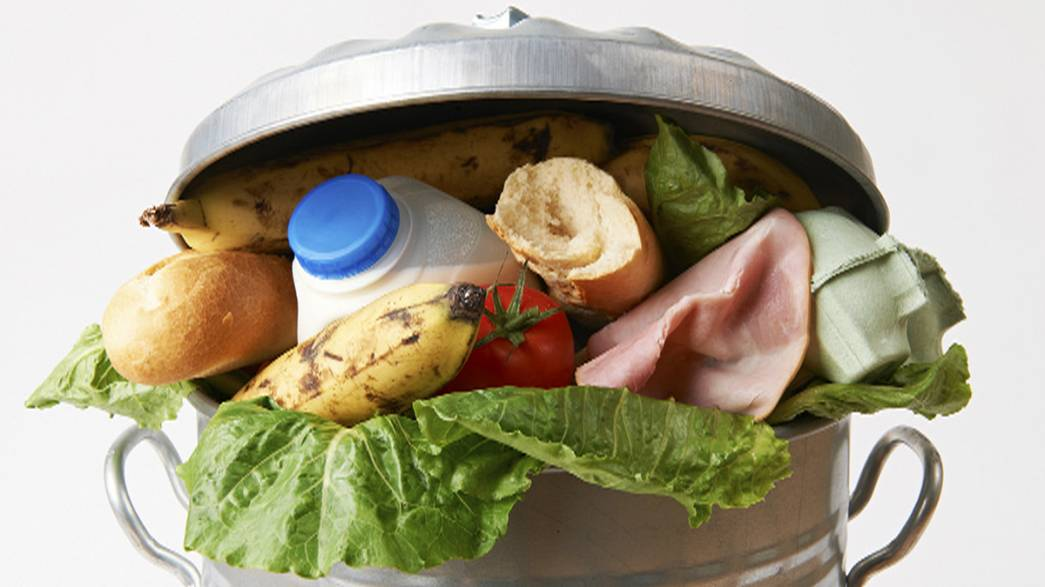 Report slams EU response to food waste