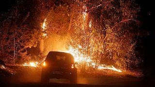 Etat d'urgence au Chili pour lutter contre les incendies