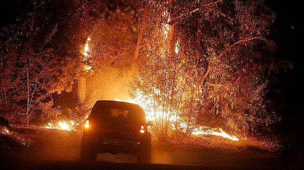 التشيلي: حالة طوارئ نتيجة نشوب حرائق هائلة