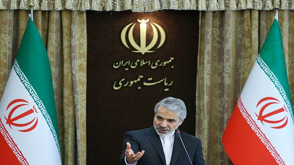 سخنگوی دولت ایران: قانون، شهرداری را مسئول حادثه پلاسکو میداند