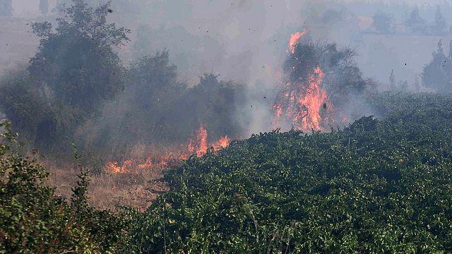 Şili'de korkutan yangın