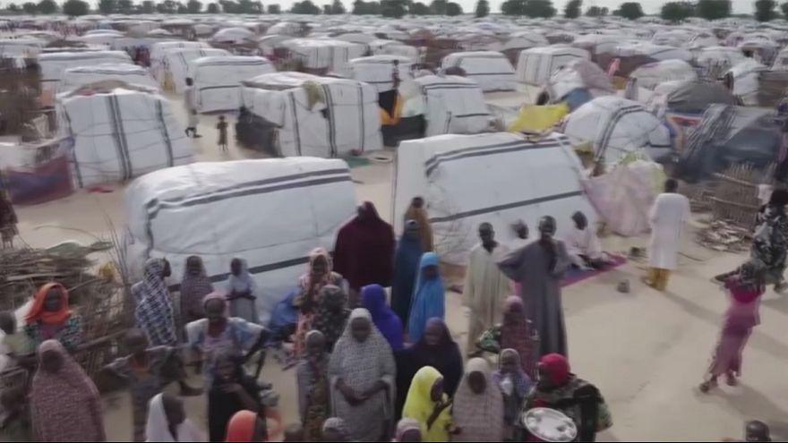 Éhínség a Csád-tó körül