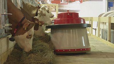 Robots start work on the farm