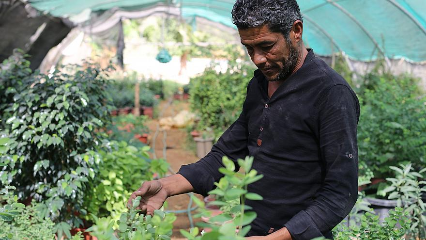 Image: Organic farmer Riyadh Yousef Marror at his farm in Jordan