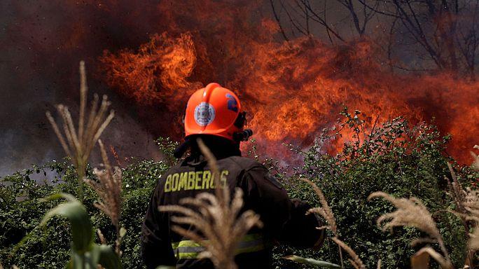 Şili'de 500 bin hektarlık ormanlık alan yangında kül oldu
