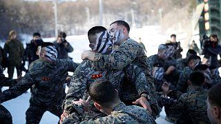 Militares dos EUA e da Coreia do Sul realizam treino gelado