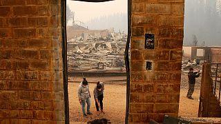 Чили: площадь лесных пожаров увеличилась до 400 тысяч гектаров