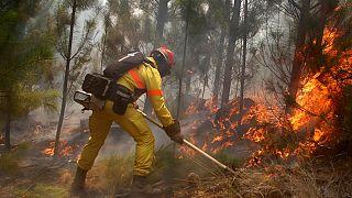 Militares españoles se suman al combate contra las llamas en Chile