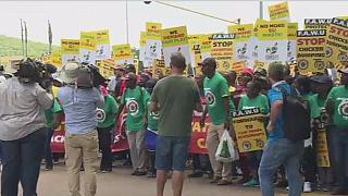 South Africa's poultry industry protests against EU dumping