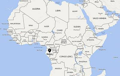 Gabon is sub-Saharan Africa\'s third-largest oil producer.