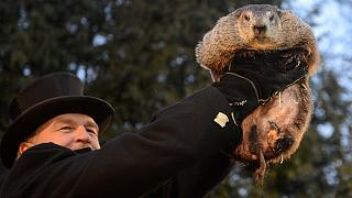 Groundhog Day: a mixture of the profane and pure fun