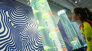 معارض تفاعلية في متحف العلوم الطبيعية في كوبنهاجن