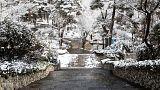تصاویری از بارش برف در چند شهر ایران