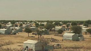 Kenya : 2 millions de personnes ménacées par la famine à cause de la sècheresse