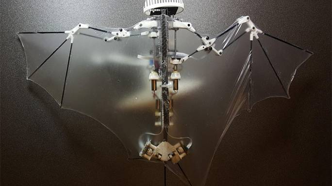 Bat robots could be flying around disaster zones within five years