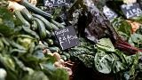 Frío en España, escasez de verduras en el Reino Unido