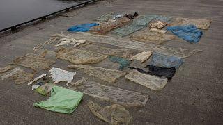 ضایعات پلاستیکی در شکم نهنگ کشته شده در ساحل نروژ