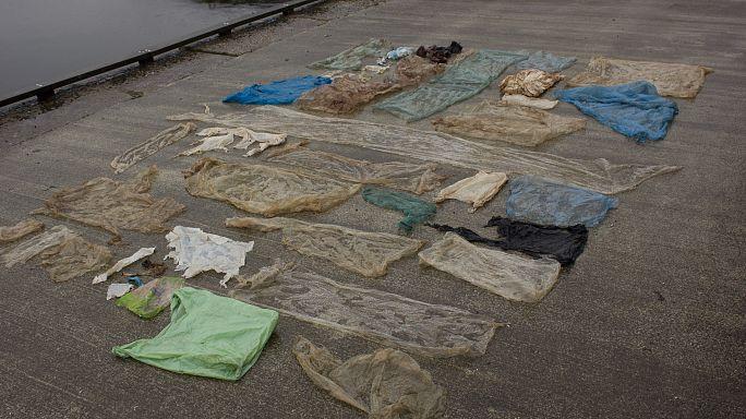 Noruega: autópsia revela grande quantidade de plástico em estômago de baleia