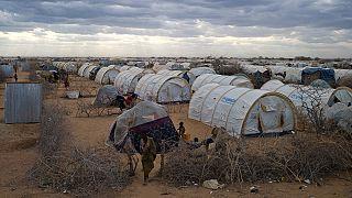 Kenya hükümetinin Dabaab mülteci kampını kapatma kararına yargı engeli