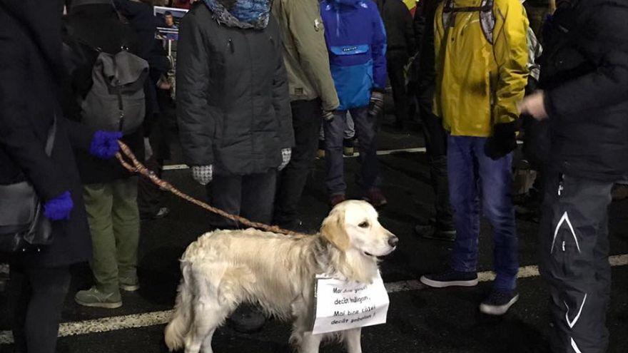 Nem adják fel a tüntetők Romániában