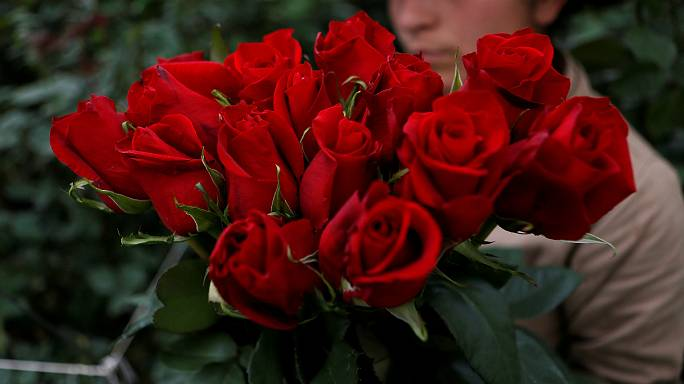 Grupo de japoneses pouco atraentes exige o fim do Dia dos Namorados
