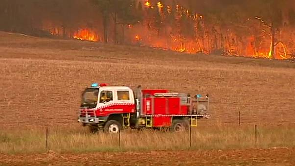 آتش سوزی گسترده در ایالت نیوساوت ولز استرالیا