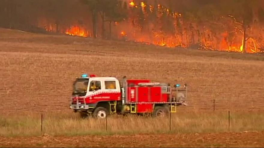 Australia: Wildfires rage in New South Wales heatwave