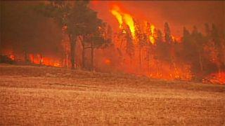 Les pompiers australiens se battent contre des feux historiques