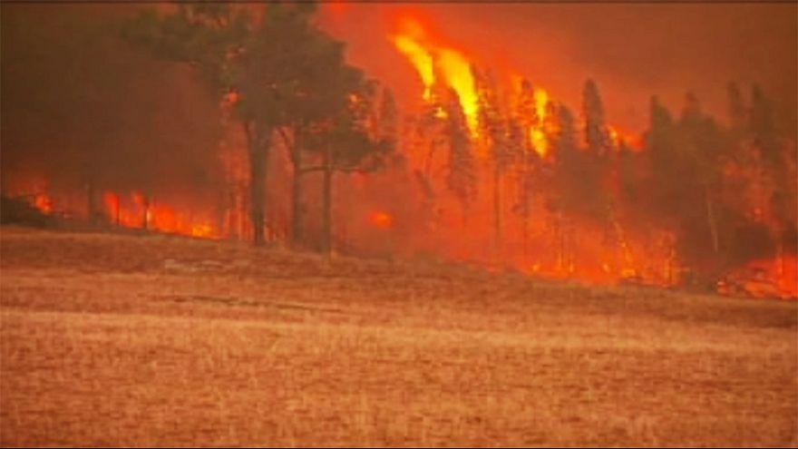 Bombeiros australianos enfrentam incêndios em Nova Gales do Sul