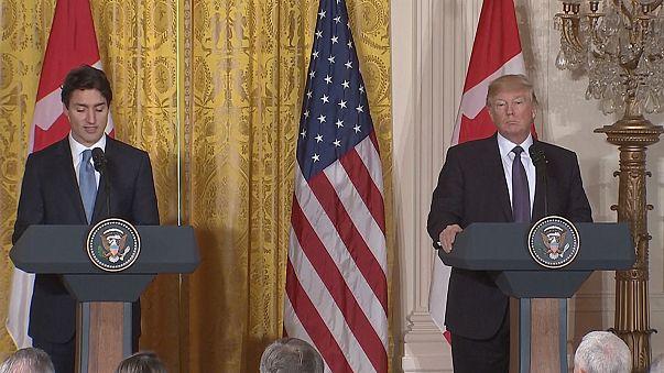 """Trudeau bei Trump in Washington: """"Engste Verbündete und Freude"""""""