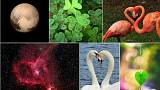 Love all around us: 10 naturally-occuring hearts