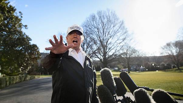 Image: Donald Trump South Lawn