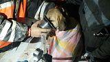 Beykoz'da 11 gündür kuyuda mahsur kalan köpek kurtarıldı