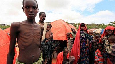 Somalie: 6 millions de personnes dans l'insécurité alimentaire (FAO)