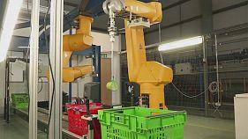 Roboter in der Lagerhalle