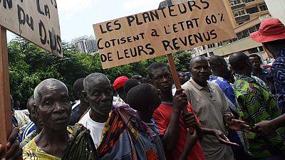 Côte d'Ivoire : interpellations lors de la manifestation des producteurs de cacao